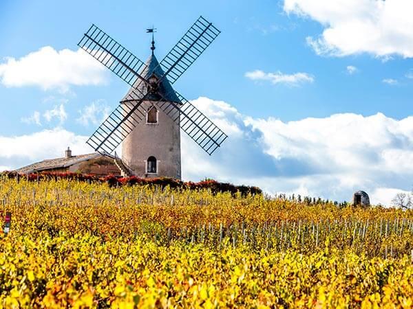 Kanpai Tourisme - Macon & Beaujolais Crus Wines