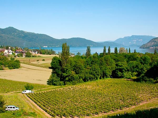 Kanpai Tourisme - Vineyards of Savoy