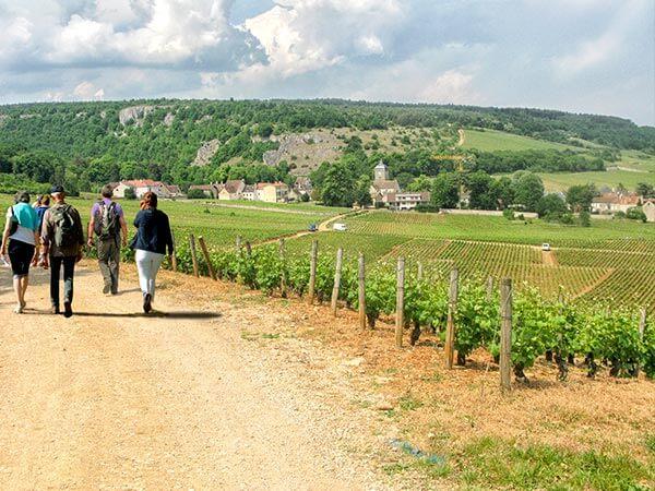 Kanpai Tourisme - Beaujolais Walk