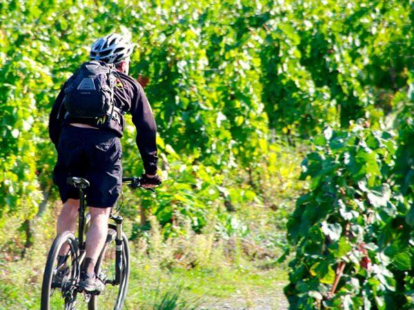 Kanpai Tourisme - Bike Tour