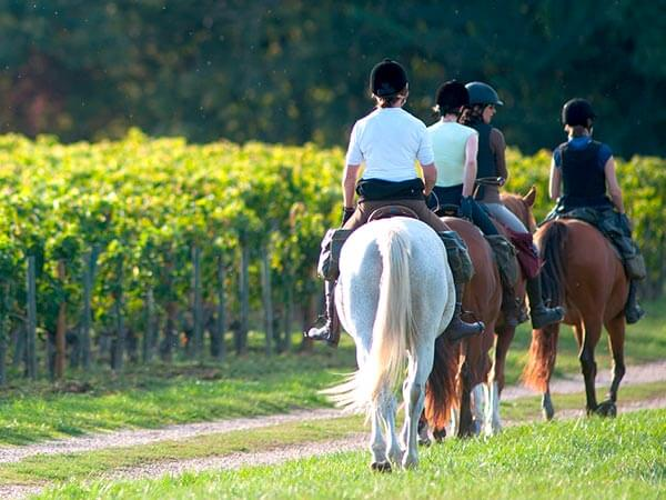 Kanpai Tourisme - Horseback Riding