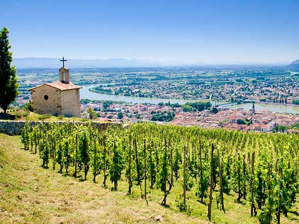 Kanpai Tourisme - Cotes du Rhone Vineyards