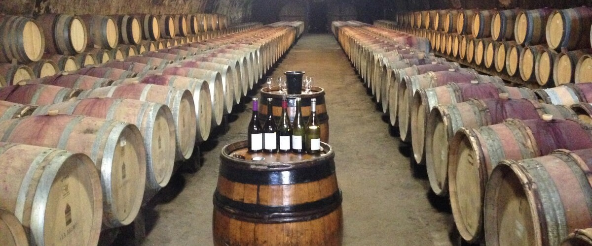 wine-tasting-beaujolais-cellar
