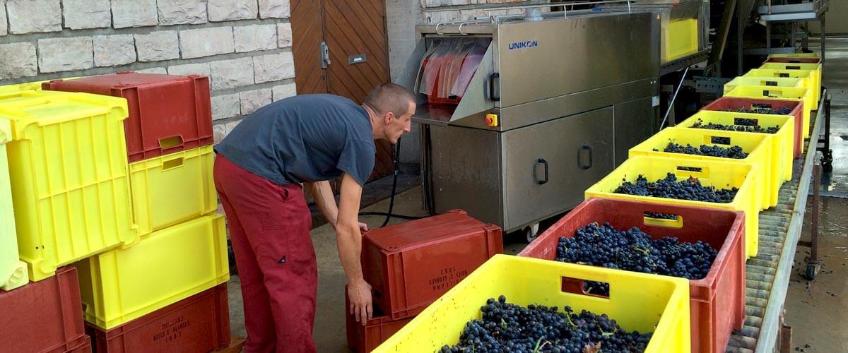 Grands vignobles de Bourgogne