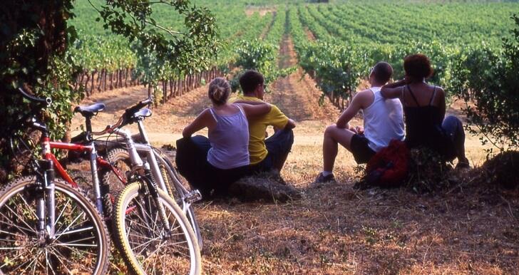 bike-tour-beaujolais