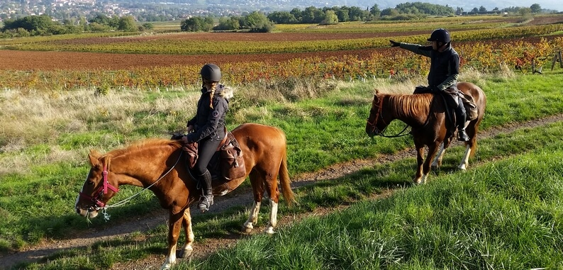 beaujolais-horse-riding