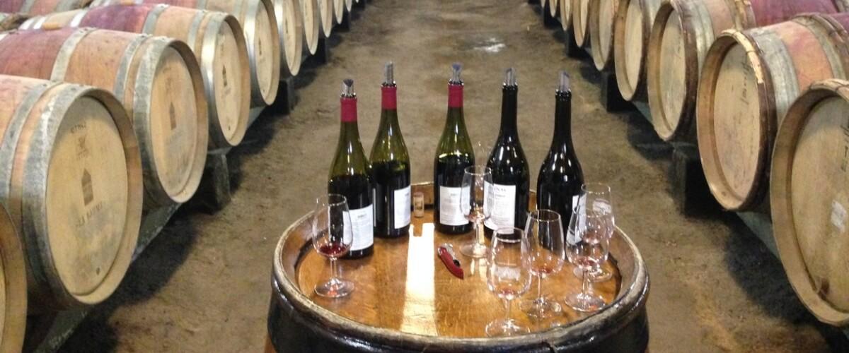beaujolais-wine-cellar