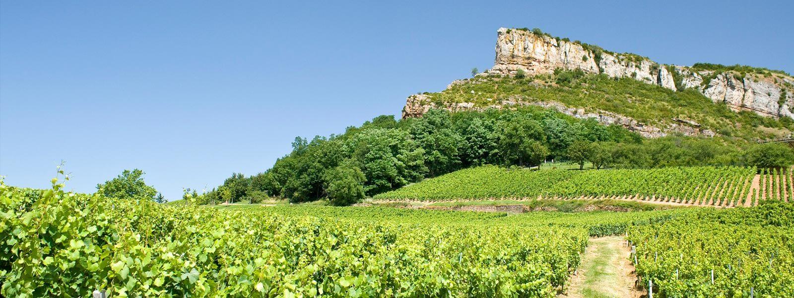 Kanpai Tourisme - Macon & Beaujolais wine tour