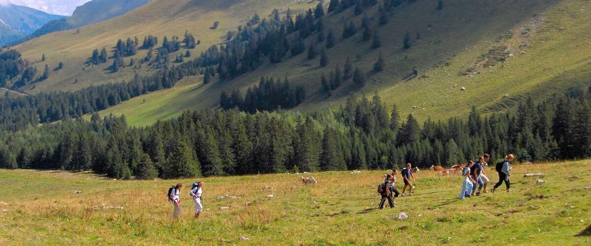 hike-alps