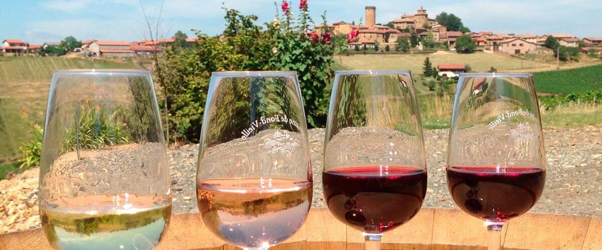 beaujolais-wines