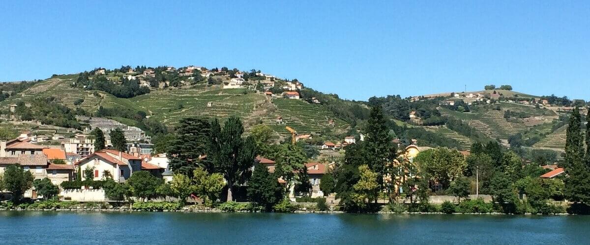 Rhone Valley Vineyards
