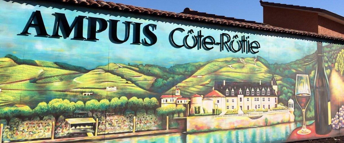 Cote Rotie Wines
