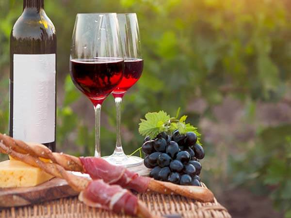 Kanpai Tourisme - Vineyard Picnic