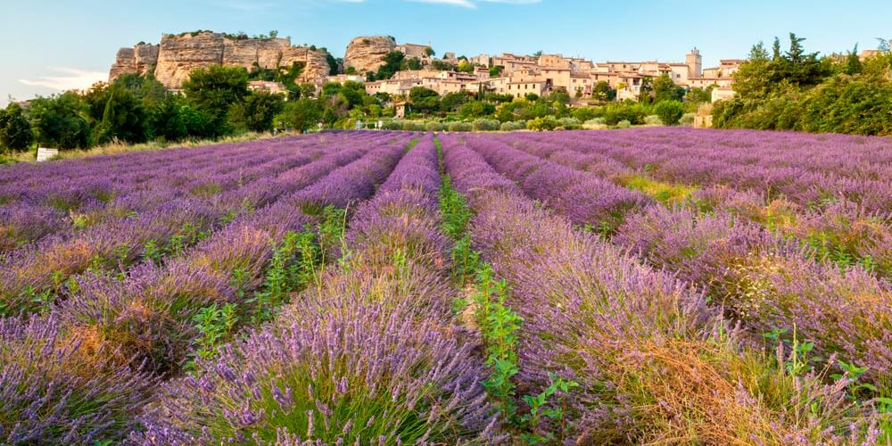 Vallée du Rhône Sud - Provence 2